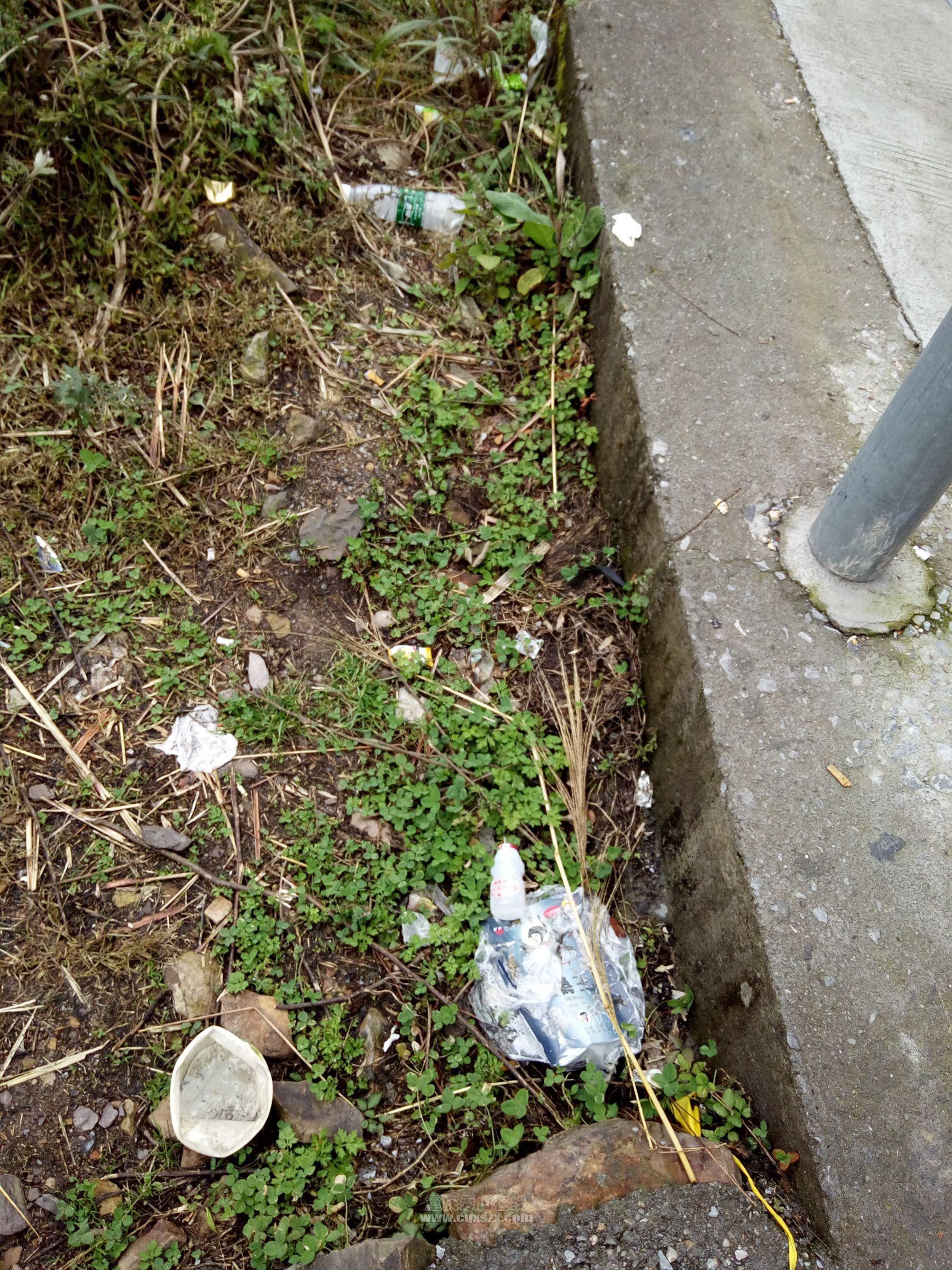 旅游景点路边随处可见垃圾