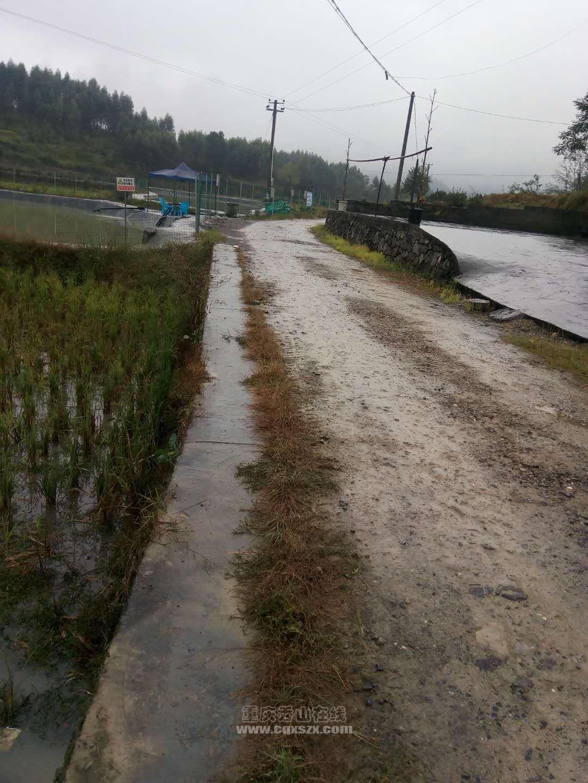 农村公路啥时候才能搞好。